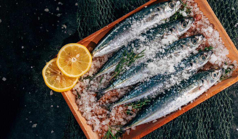 Goede visolie omega-3 vetzuren