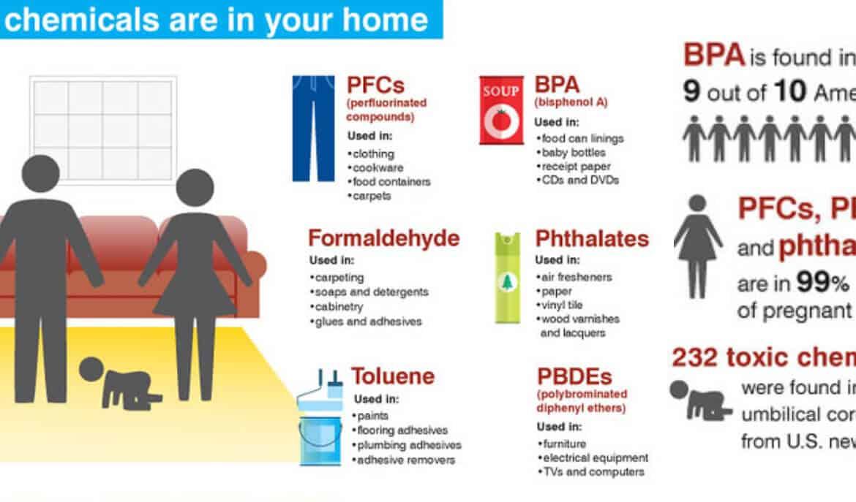 Ontgifting hormoonverstorende giftige stoffen