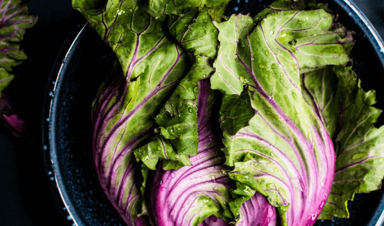 AIP dieet, het belang van groene bladgroentes bij auto-immuunziekten